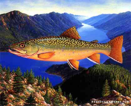 Trout fishing sport mountain stock illustration